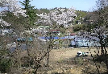mt.onigiri3